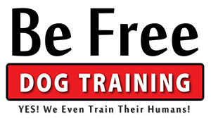 Be Free Dog Training